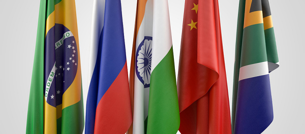 BRICS leaders declare common stand on WTO reform