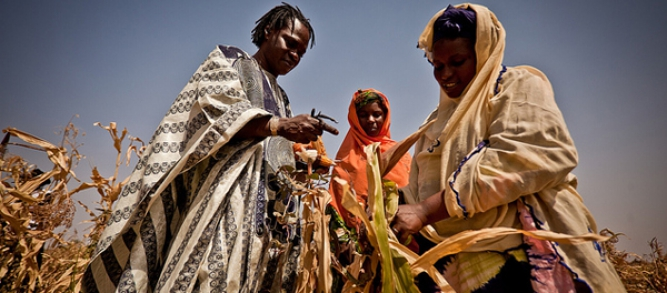 Aissat Abduljub and Habiba Wellba show Senegalese singer Baaba Maal their failed crops during the 2012 Sahel food crisis.