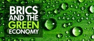 The Green Economy in the G-20: New research