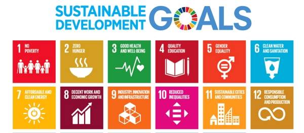 Mainstreaming trade to attain the Sustainable Development Goals – WTO Publication